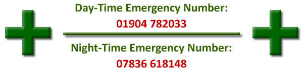emergency service numbers